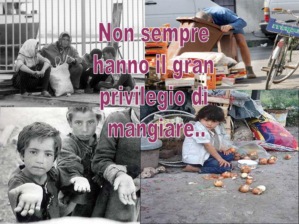 Di fronte a questa situazione disastrosa lunico modo che hanno di manifestare la loro sofferenza per il razzismo che sopportano, è facendo manifestazioni, o pregando pietà agli italiani.