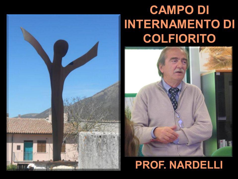 CAMPO DI INTERNAMENTO DI COLFIORITO PROF. NARDELLI