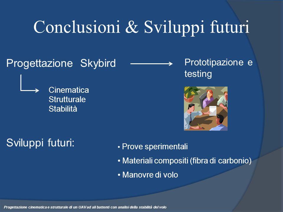 Conclusioni & Sviluppi futuri Progettazione cinematica e strutturale di un UAV ad ali battenti con analisi della stabilità del volo Progettazione Skyb