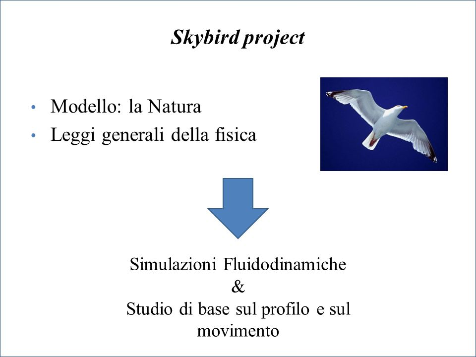 Progettazione cinematica e strutturale di un UAV ad ali battenti con analisi della stabilità del volo 1.