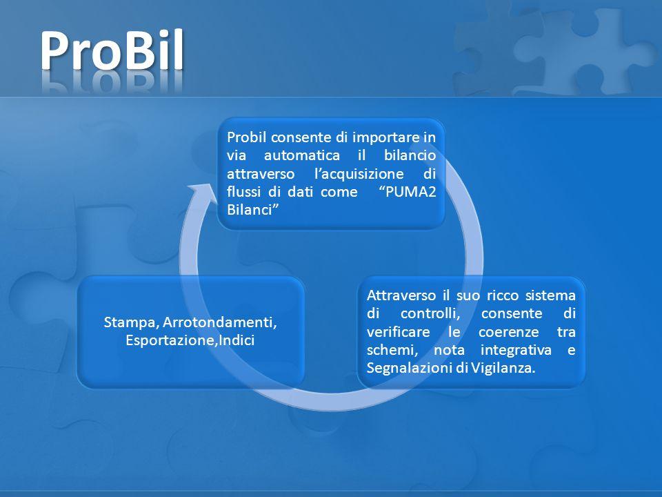 Probil consente di importare in via automatica il bilancio attraverso lacquisizione di flussi di dati come PUMA2 Bilanci Attraverso il suo ricco siste