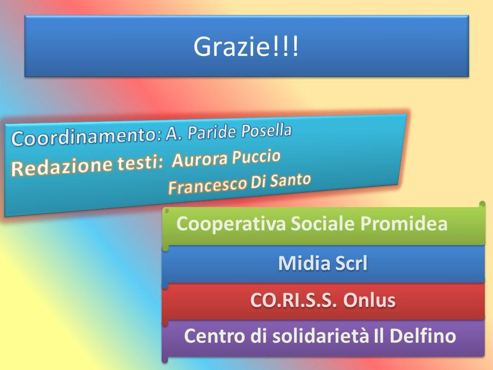 Grazie!!! Centro di solidarietà Il Delfino CO.RI.S.S. Onlus Midia Scrl Cooperativa Sociale Promidea