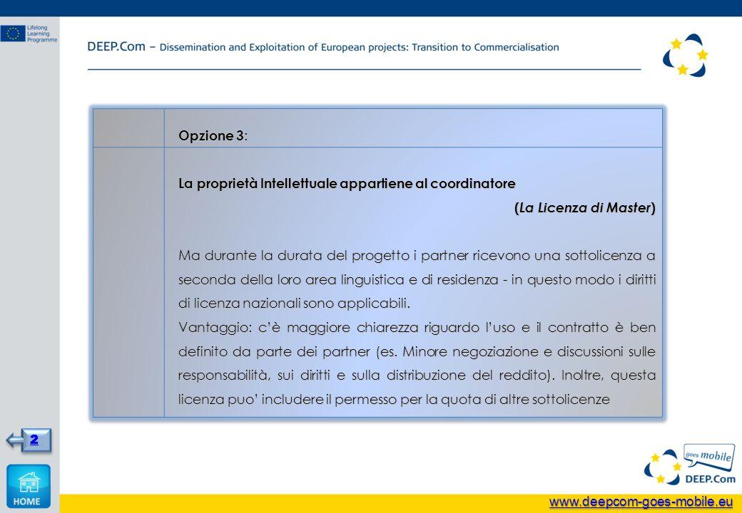 Opzione 3 : La proprietà Intellettuale appartiene al coordinatore ( La Licenza di Master ) Ma durante la durata del progetto i partner ricevono una sottolicenza a seconda della loro area linguistica e di residenza - in questo modo i diritti di licenza nazionali sono applicabili.