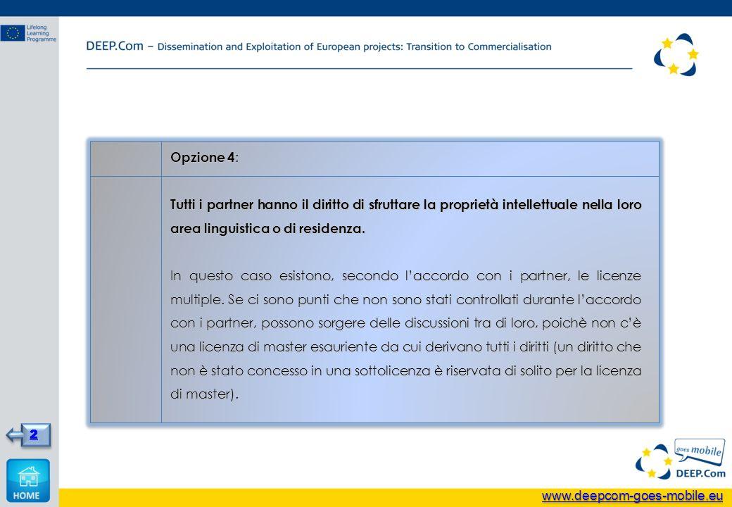Opzione 4 : Tutti i partner hanno il diritto di sfruttare la proprietà intellettuale nella loro area linguistica o di residenza. In questo caso esisto