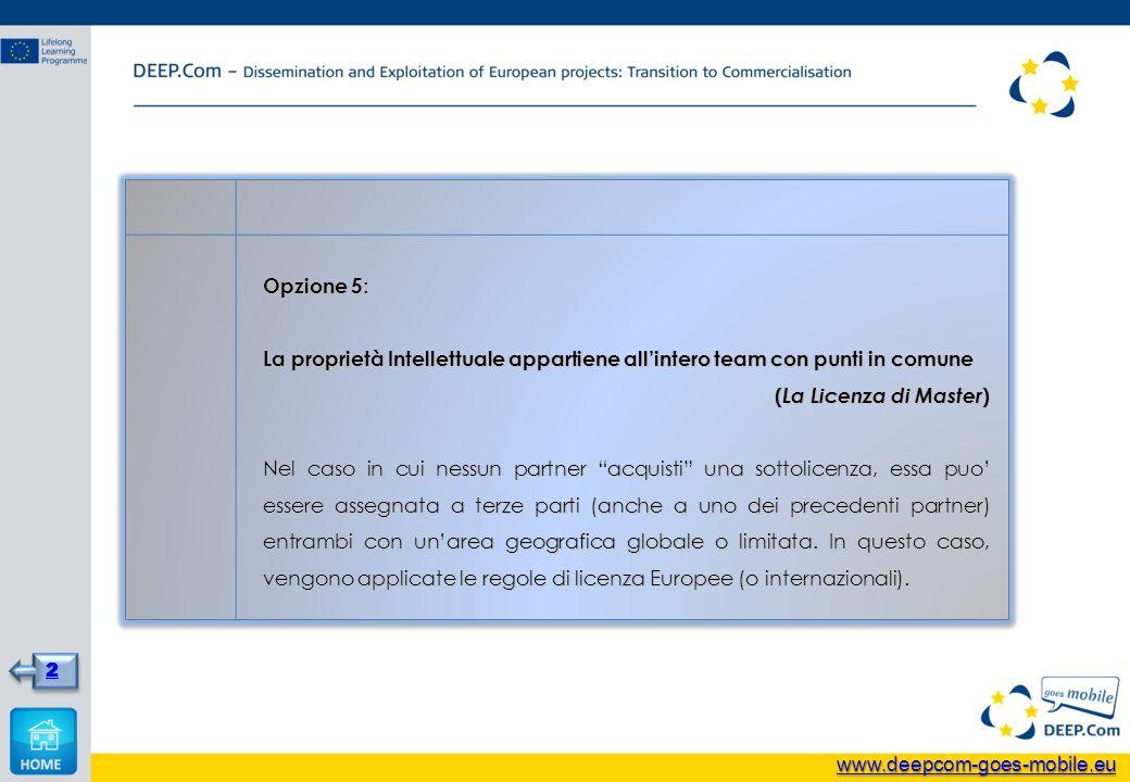 Opzione 5 : La proprietà Intellettuale appartiene allintero team con punti in comune ( La Licenza di Master ) Nel caso in cui nessun partner acquisti