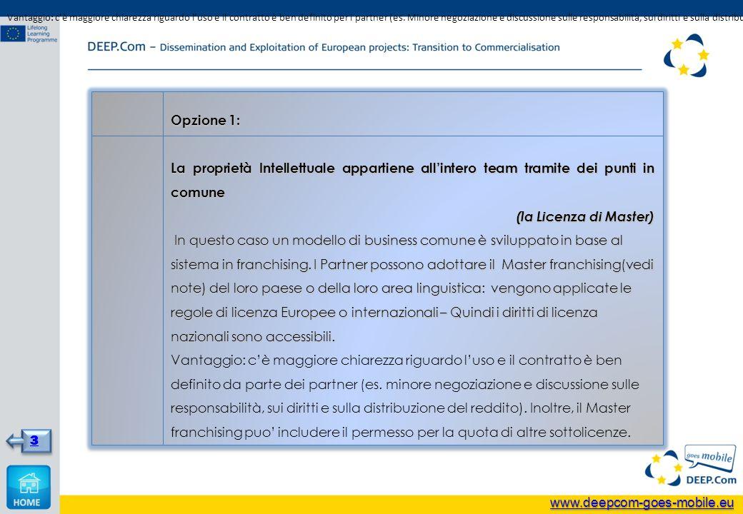 Opzione 1: La proprietà Intellettuale appartiene allintero team tramite dei punti in comune (la Licenza di Master) In questo caso un modello di business comune è sviluppato in base al sistema in franchising.