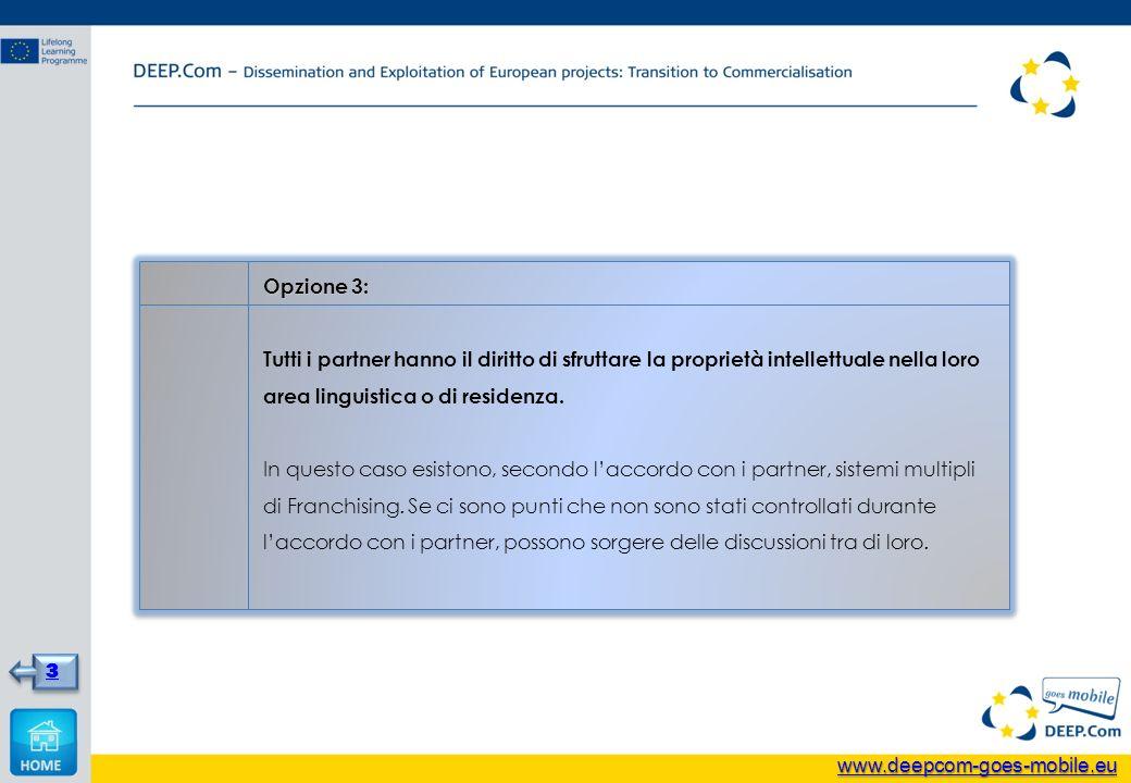 Opzione 3: Tutti i partner hanno il diritto di sfruttare la proprietà intellettuale nella loro area linguistica o di residenza. In questo caso esiston