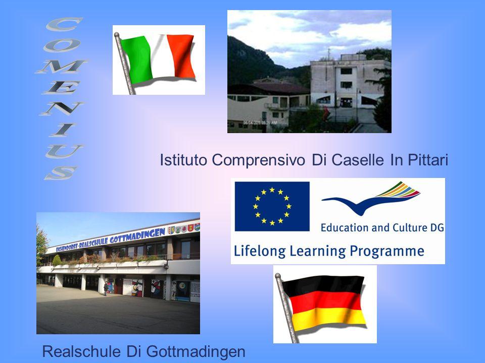 Istituto Comprensivo Di Caselle In Pittari Realschule Di Gottmadingen