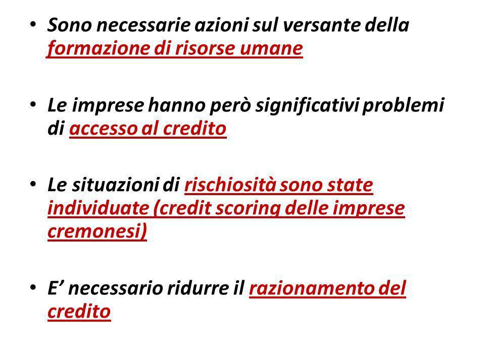 Sono necessarie azioni sul versante della formazione di risorse umane Le imprese hanno però significativi problemi di accesso al credito Le situazioni