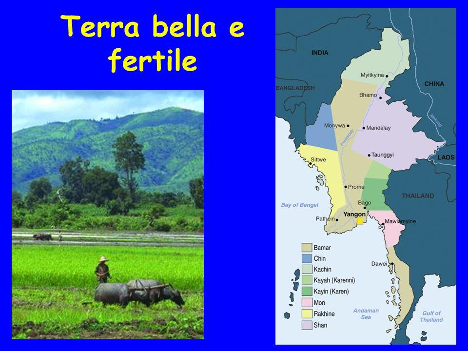 Molti Gruppi etnici 50 milioni di persone + di 100 lingue Capitale: Rangun 5 milioni