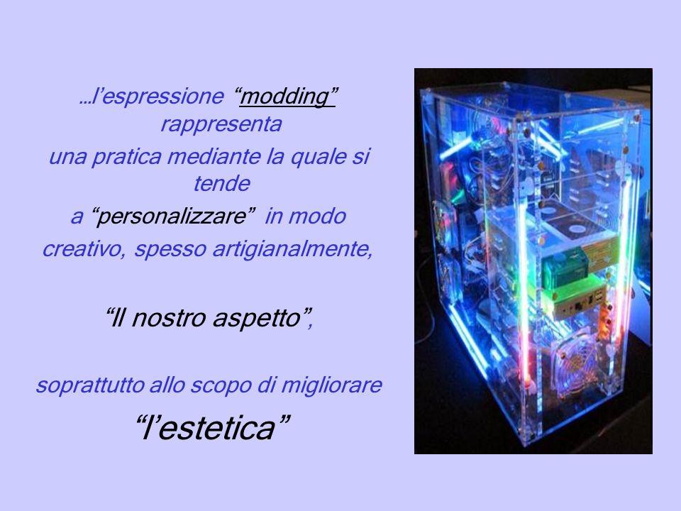 …lespressione modding rappresenta una pratica mediante la quale si tende a personalizzare in modo creativo, spesso artigianalmente, Il nostro aspetto, soprattutto allo scopo di migliorare lestetica