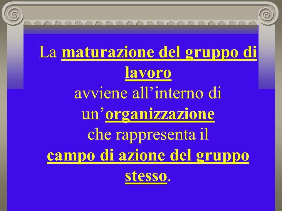La maturazione del gruppo di lavoro avviene allinterno di unorganizzazione che rappresenta il campo di azione del gruppo stesso.
