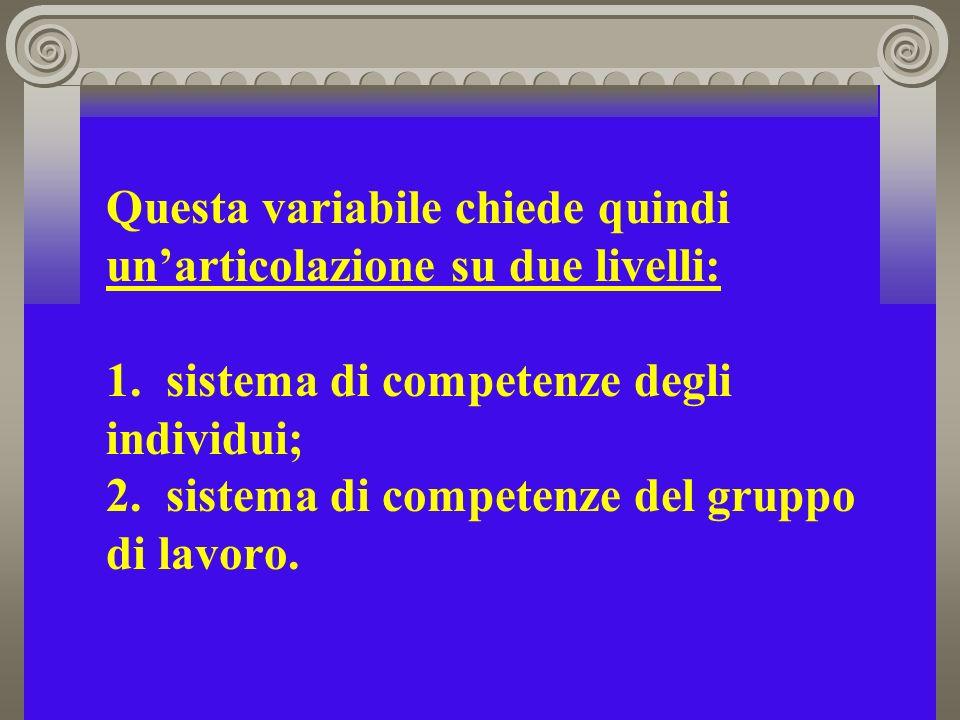 Questa variabile chiede quindi unarticolazione su due livelli: 1. sistema di competenze degli individui; 2. sistema di competenze del gruppo di lavoro