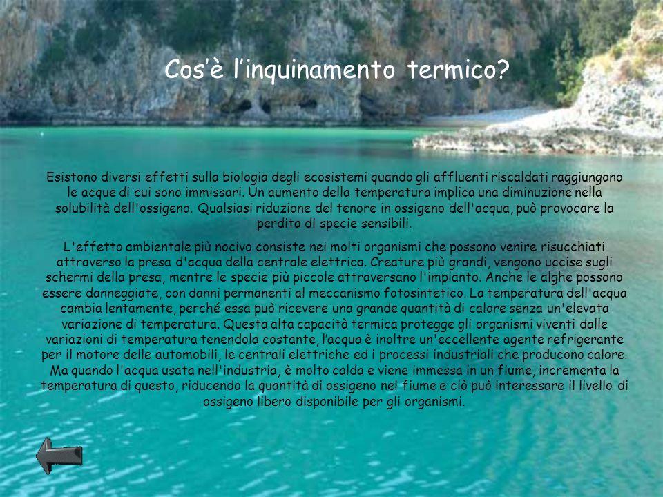 Cosè linquinamento termico? Esistono diversi effetti sulla biologia degli ecosistemi quando gli affluenti riscaldati raggiungono le acque di cui sono