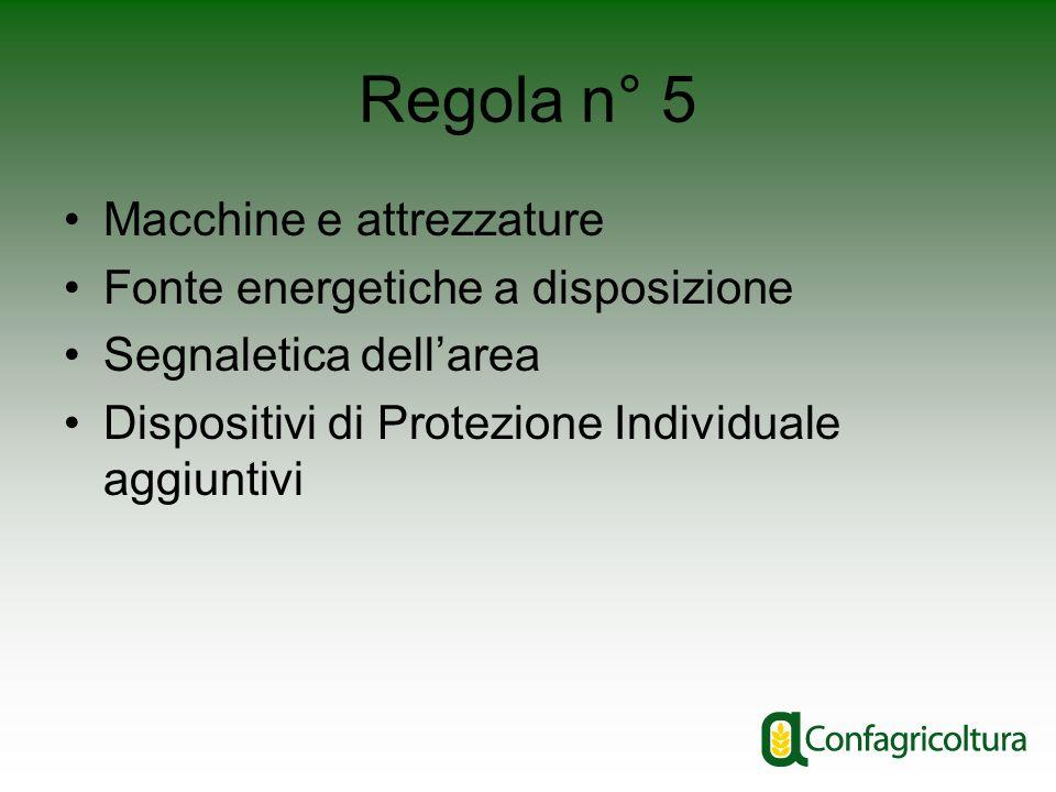 Regola n° 5 Macchine e attrezzature Fonte energetiche a disposizione Segnaletica dellarea Dispositivi di Protezione Individuale aggiuntivi