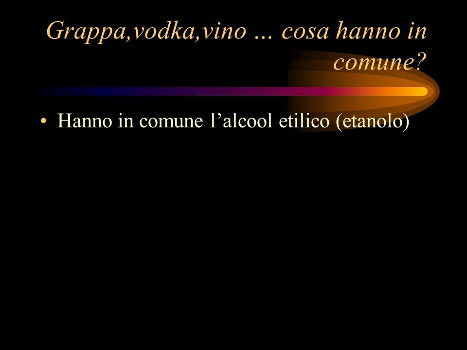 Grappa,vodka,vino … cosa hanno in comune? Hanno in comune lalcool etilico (etanolo)