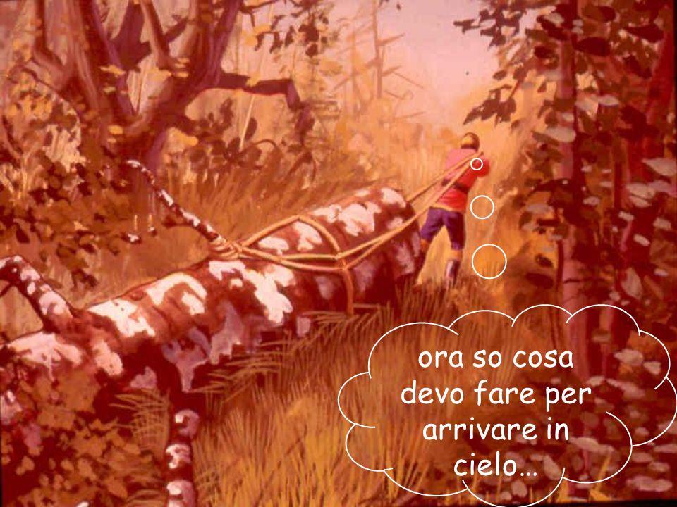 02/03/201456 Egli capì quanto era stato presuntuoso. Si avviò pian piano verso casa, trascinando la grande betulla.