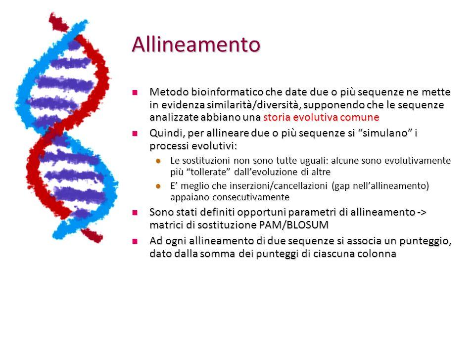 Allineamento Metodo bioinformatico che date due o più sequenze ne mette in evidenza similarità/diversità, supponendo che le sequenze analizzate abbiano una storia evolutiva comune Metodo bioinformatico che date due o più sequenze ne mette in evidenza similarità/diversità, supponendo che le sequenze analizzate abbiano una storia evolutiva comune Quindi, per allineare due o più sequenze si simulano i processi evolutivi: Quindi, per allineare due o più sequenze si simulano i processi evolutivi: Le sostituzioni non sono tutte uguali: alcune sono evolutivamente più tollerate dallevoluzione di altre Le sostituzioni non sono tutte uguali: alcune sono evolutivamente più tollerate dallevoluzione di altre E meglio che inserzioni/cancellazioni (gap nellallineamento) appaiano consecutivamente E meglio che inserzioni/cancellazioni (gap nellallineamento) appaiano consecutivamente Sono stati definiti opportuni parametri di allineamento -> matrici di sostituzione PAM/BLOSUM Sono stati definiti opportuni parametri di allineamento -> matrici di sostituzione PAM/BLOSUM Ad ogni allineamento di due sequenze si associa un punteggio, dato dalla somma dei punteggi di ciascuna colonna Ad ogni allineamento di due sequenze si associa un punteggio, dato dalla somma dei punteggi di ciascuna colonna