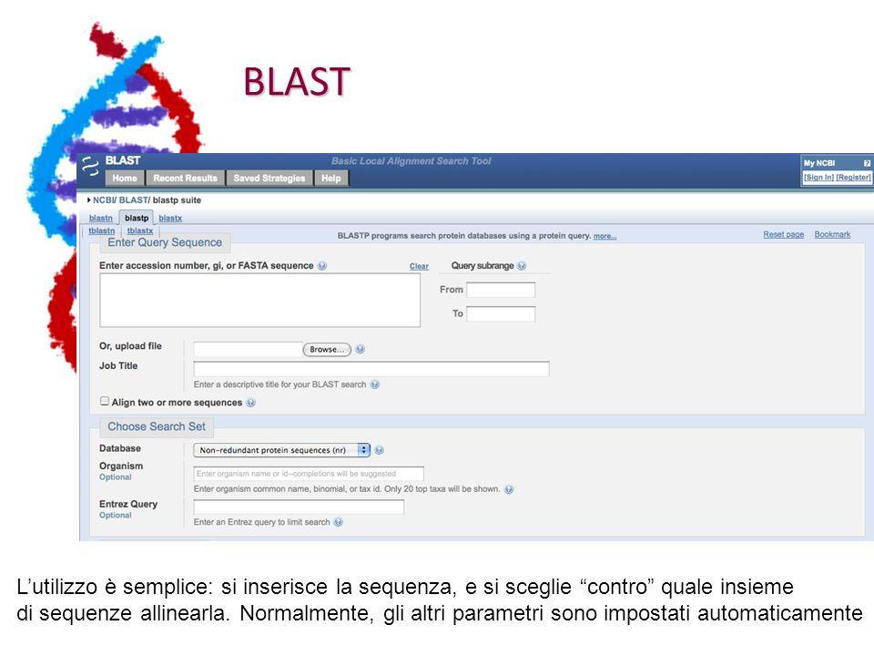 BLAST Lutilizzo è semplice: si inserisce la sequenza, e si sceglie contro quale insieme di sequenze allinearla.