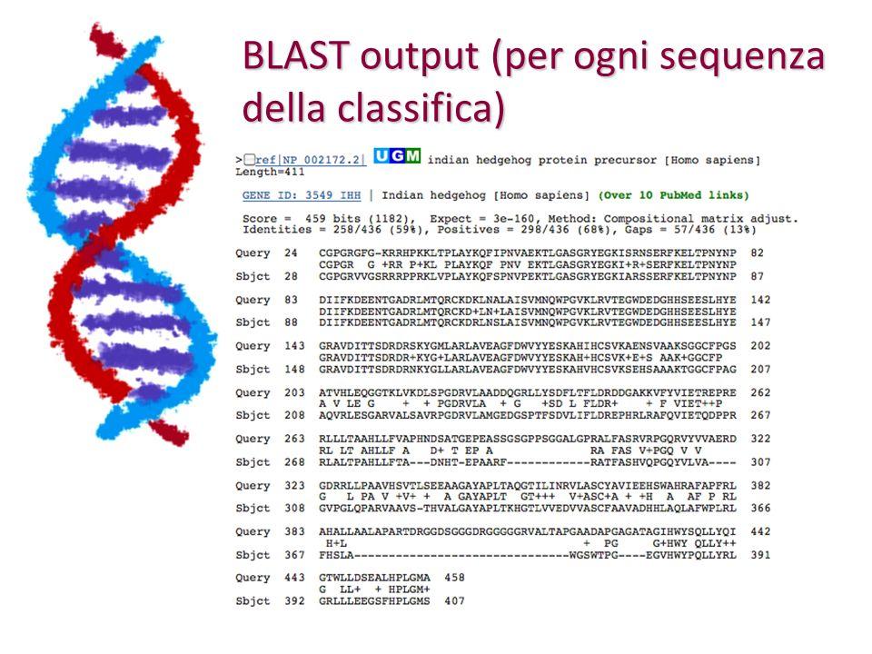 BLAST output (per ogni sequenza della classifica)