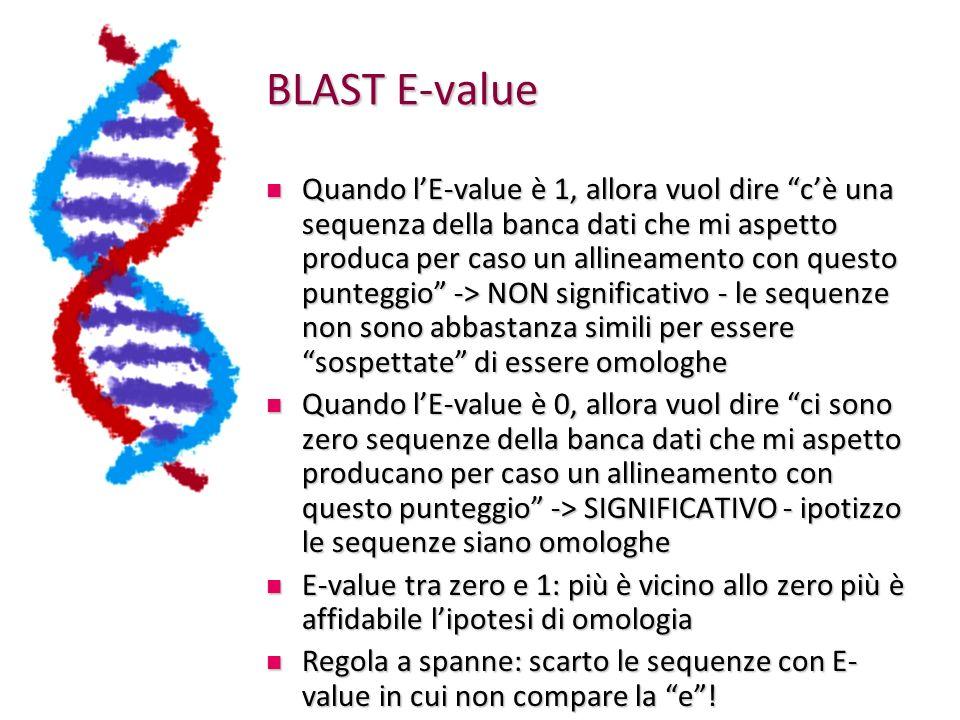 BLAST E-value Quando lE-value è 1, allora vuol dire cè una sequenza della banca dati che mi aspetto produca per caso un allineamento con questo punteggio -> NON significativo - le sequenze non sono abbastanza simili per essere sospettate di essere omologhe Quando lE-value è 1, allora vuol dire cè una sequenza della banca dati che mi aspetto produca per caso un allineamento con questo punteggio -> NON significativo - le sequenze non sono abbastanza simili per essere sospettate di essere omologhe Quando lE-value è 0, allora vuol dire ci sono zero sequenze della banca dati che mi aspetto producano per caso un allineamento con questo punteggio -> SIGNIFICATIVO - ipotizzo le sequenze siano omologhe Quando lE-value è 0, allora vuol dire ci sono zero sequenze della banca dati che mi aspetto producano per caso un allineamento con questo punteggio -> SIGNIFICATIVO - ipotizzo le sequenze siano omologhe E-value tra zero e 1: più è vicino allo zero più è affidabile lipotesi di omologia E-value tra zero e 1: più è vicino allo zero più è affidabile lipotesi di omologia Regola a spanne: scarto le sequenze con E- value in cui non compare la e.