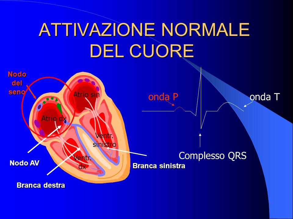 ATTIVAZIONE NORMALE DEL CUORE ATTIVAZIONE NORMALE DEL CUORE Nodo del seno Nodo AV Branca destra Branca sinistra Atrio dx Atrio sin Ventr.