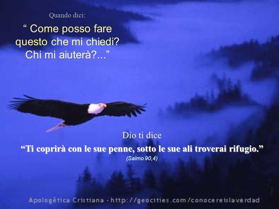 Quando dici: Come posso fare questo che mi chiedi? Chi mi aiuterà?... Dio ti dice Ti coprirà con le sue penne, sotto le sue ali troverai rifugio. (Sal