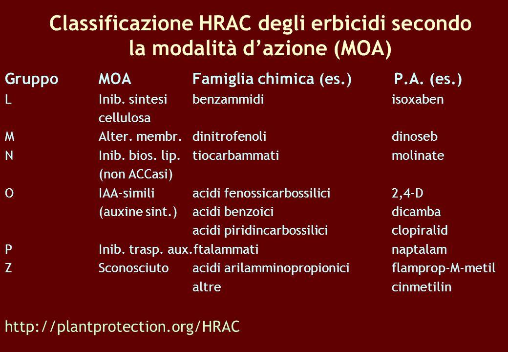 Classificazione HRAC degli erbicidi secondo la modalità dazione (MOA) GruppoMOAFamiglia chimica (es.) P.A. (es.) LInib. sintesibenzammidi isoxaben cel