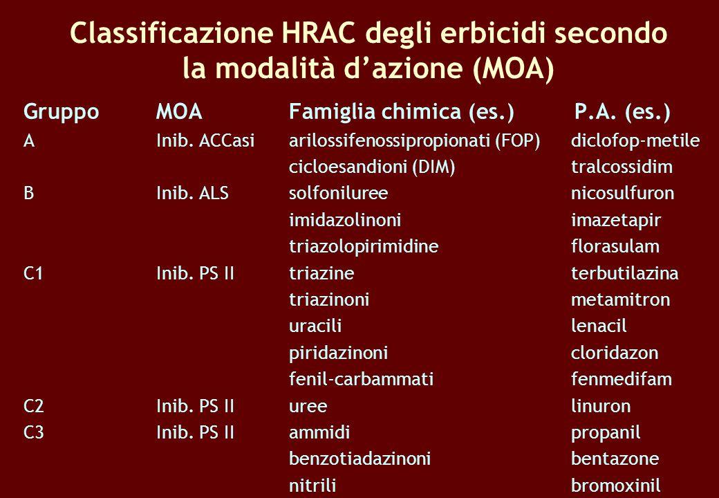 Classificazione HRAC degli erbicidi secondo la modalità dazione (MOA) GruppoMOAFamiglia chimica (es.) P.A. (es.) AInib. ACCasiarilossifenossipropionat