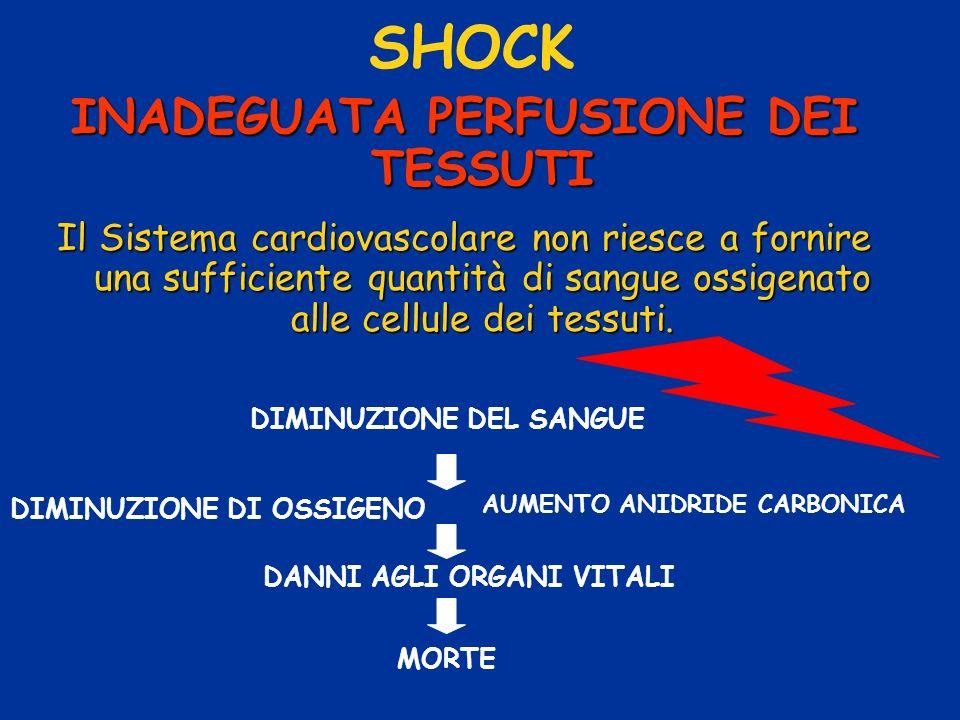 SHOCK INADEGUATA PERFUSIONE DEI TESSUTI Il Sistema cardiovascolare non riesce a fornire una sufficiente quantità di sangue ossigenato alle cellule dei