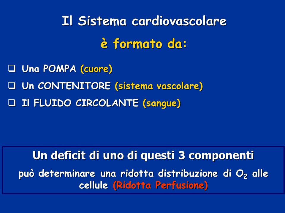 Il Sistema cardiovascolare è formato da: Una POMPA (cuore) Una POMPA (cuore) Un CONTENITORE (sistema vascolare) Un CONTENITORE (sistema vascolare) Il