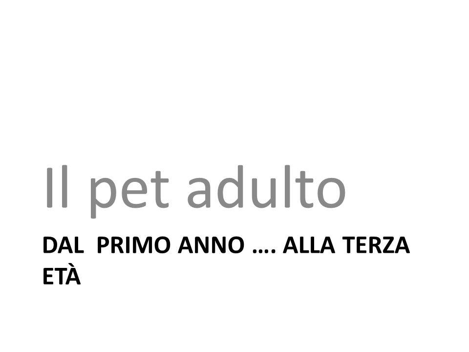 DAL PRIMO ANNO …. ALLA TERZA ETÀ Il pet adulto
