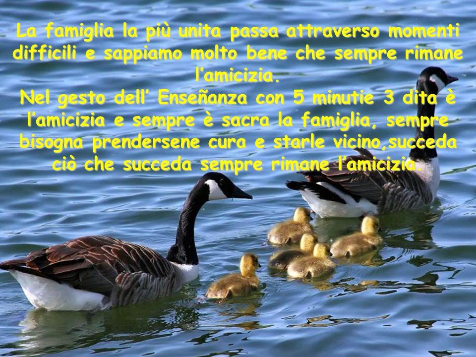 La famiglia la più unita passa attraverso momenti difficili e sappiamo molto bene che sempre rimane lamicizia.