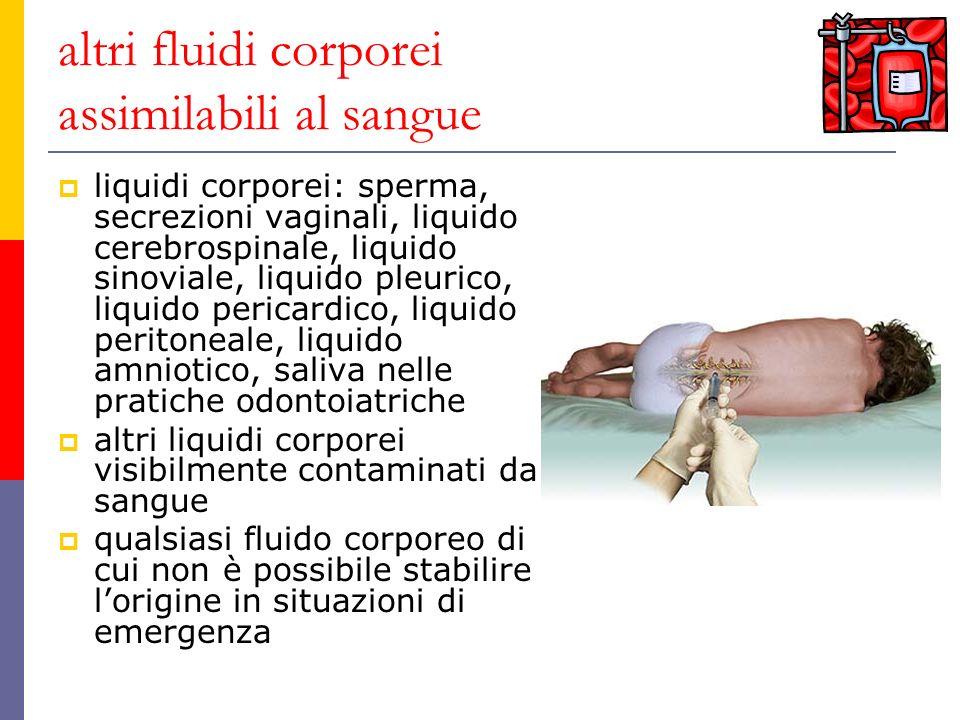 altri fluidi corporei assimilabili al sangue liquidi corporei: sperma, secrezioni vaginali, liquido cerebrospinale, liquido sinoviale, liquido pleuric