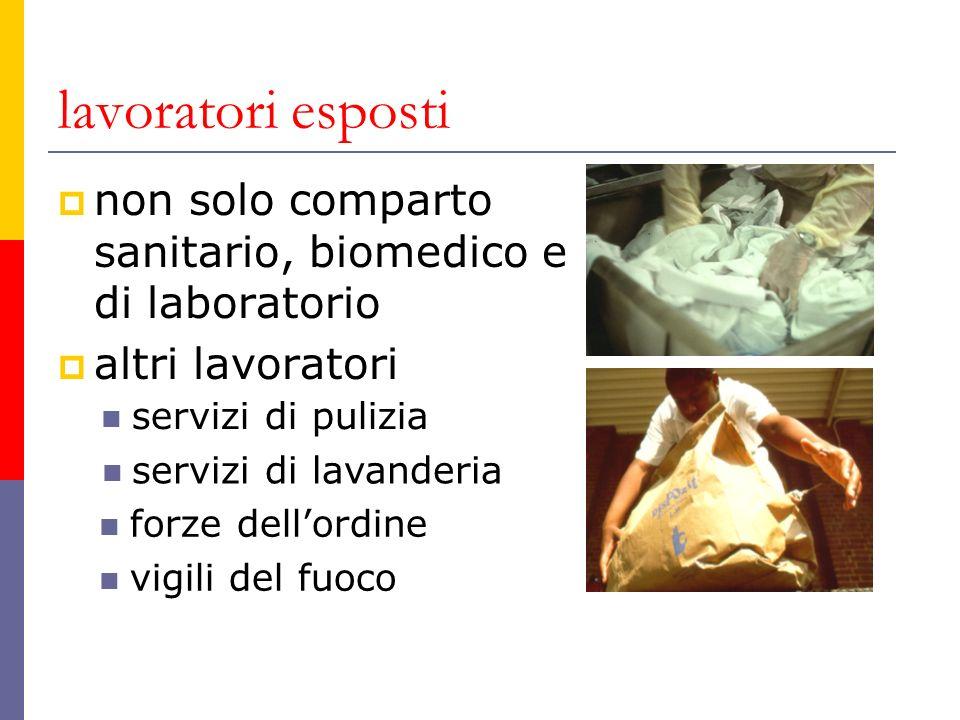 lavoratori esposti non solo comparto sanitario, biomedico e di laboratorio altri lavoratori servizi di pulizia servizi di lavanderia forze dellordine