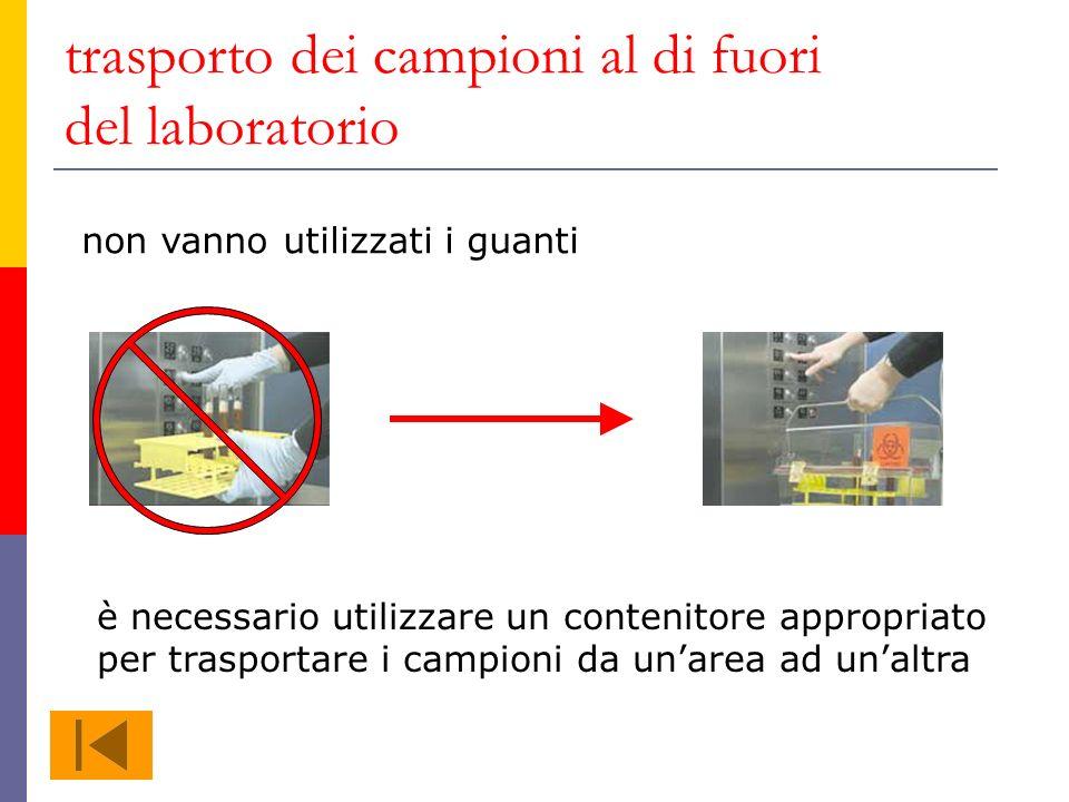 trasporto dei campioni al di fuori del laboratorio non vanno utilizzati i guanti è necessario utilizzare un contenitore appropriato per trasportare i