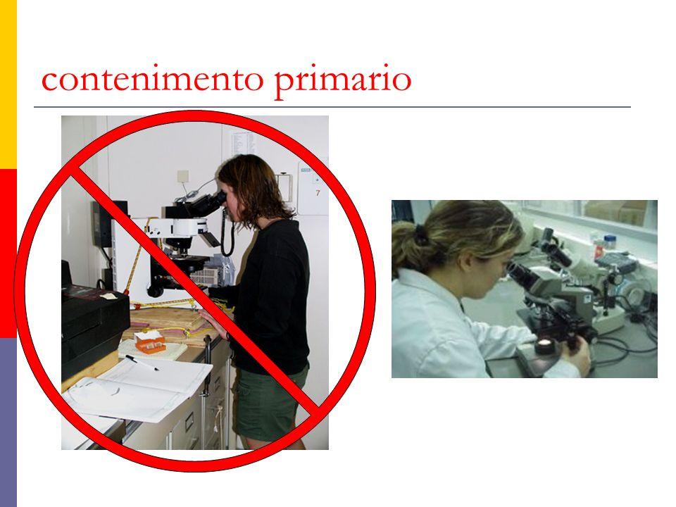 trasporto dei campioni al di fuori del laboratorio non vanno utilizzati i guanti è necessario utilizzare un contenitore appropriato per trasportare i campioni da unarea ad unaltra