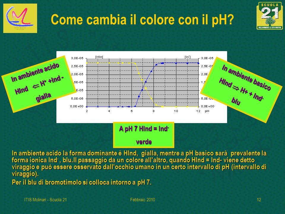 ITIS Molinari - Scuola 21Febbraio 201012 Come cambia il colore con il pH.