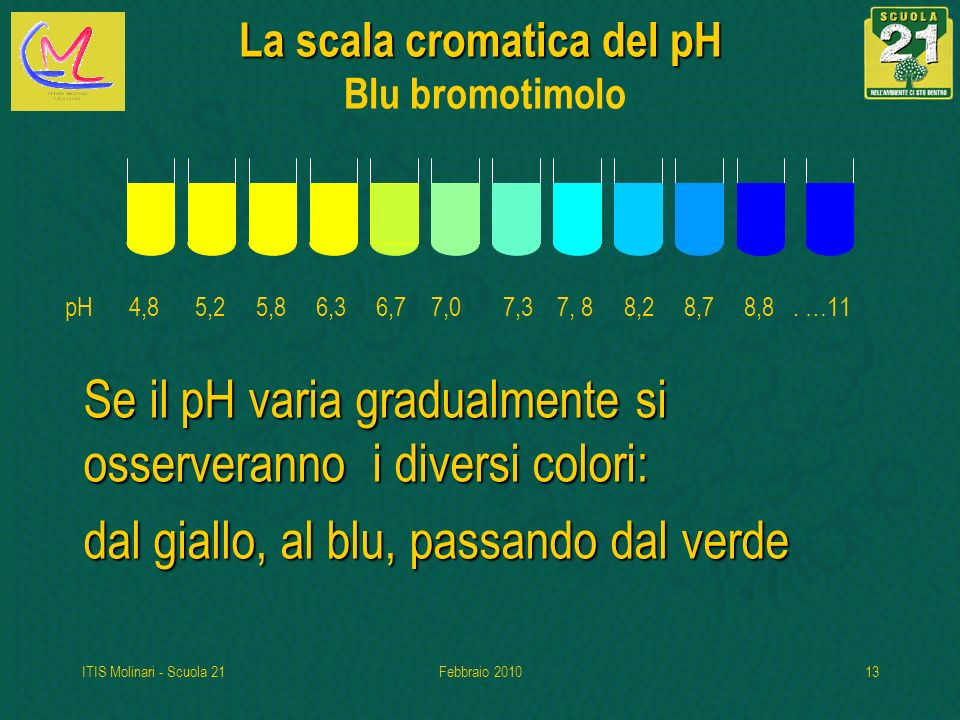 ITIS Molinari - Scuola 21Febbraio 201013 La scala cromatica del pH La scala cromatica del pH Blu bromotimolo Se il pH varia gradualmente si osserveranno i diversi colori: dal giallo, al blu, passando dal verde pH 4,8 5,2 5,8 6,3 6,7 7,0 7,3 7, 8 8,2 8,7 8,8.