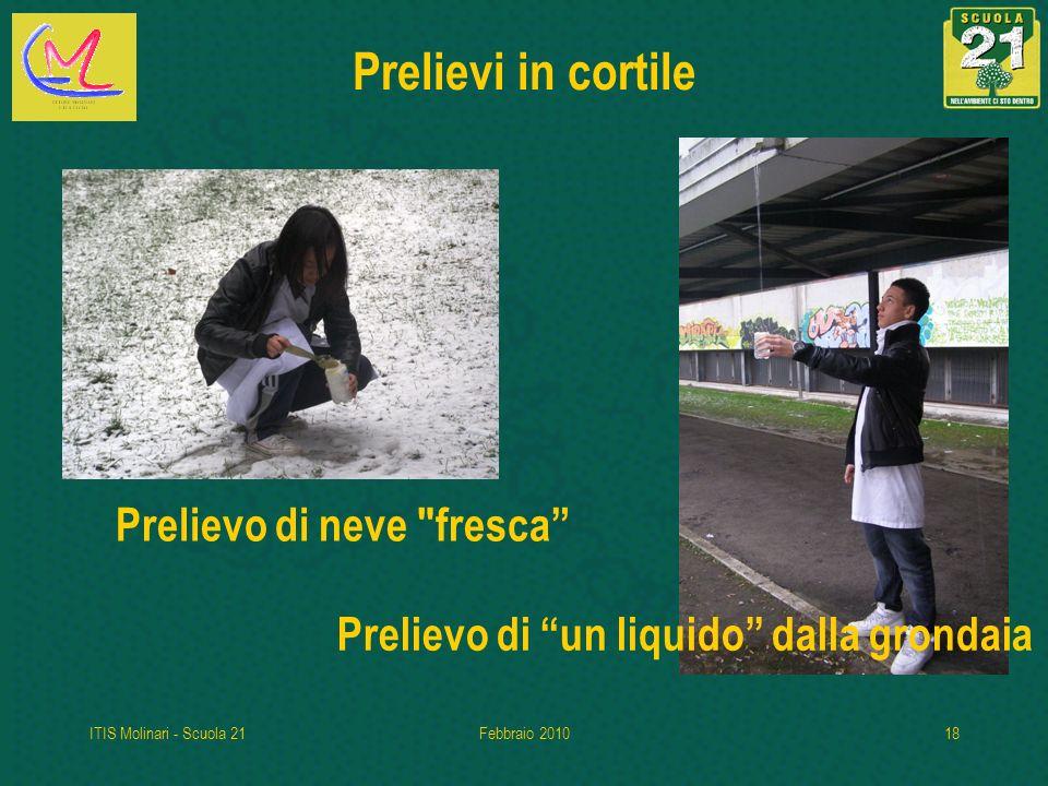 ITIS Molinari - Scuola 21Febbraio 201018 Prelievi in cortile Prelievo di neve fresca Prelievo di un liquido dalla grondaia