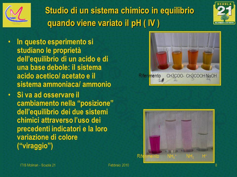 ITIS Molinari - Scuola 21Febbraio 20108 Studio di un sistema chimico in equilibrio quando viene variato il pH ( IV ) In questo esperimento si studiano le proprietà dellequilibrio di un acido e di una base debole: il sistema acido acetico/ acetato e il sistema ammoniaca/ ammonio Si va ad osservare il cambiamento nella posizione dellequilibrio dei due sistemi chimici attraverso luso dei precedenti indicatori e la loro variazione di colore (viraggio) Riferimento NH 4 + NH 3 H + Riferimento CH3COO- CH3COOH NaOH