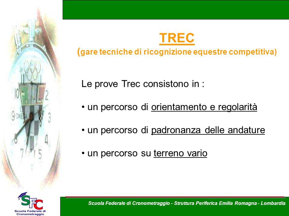 TREC ( gare tecniche di ricognizione equestre competitiva) Le prove Trec consistono in : un percorso di orientamento e regolarità un percorso di padro