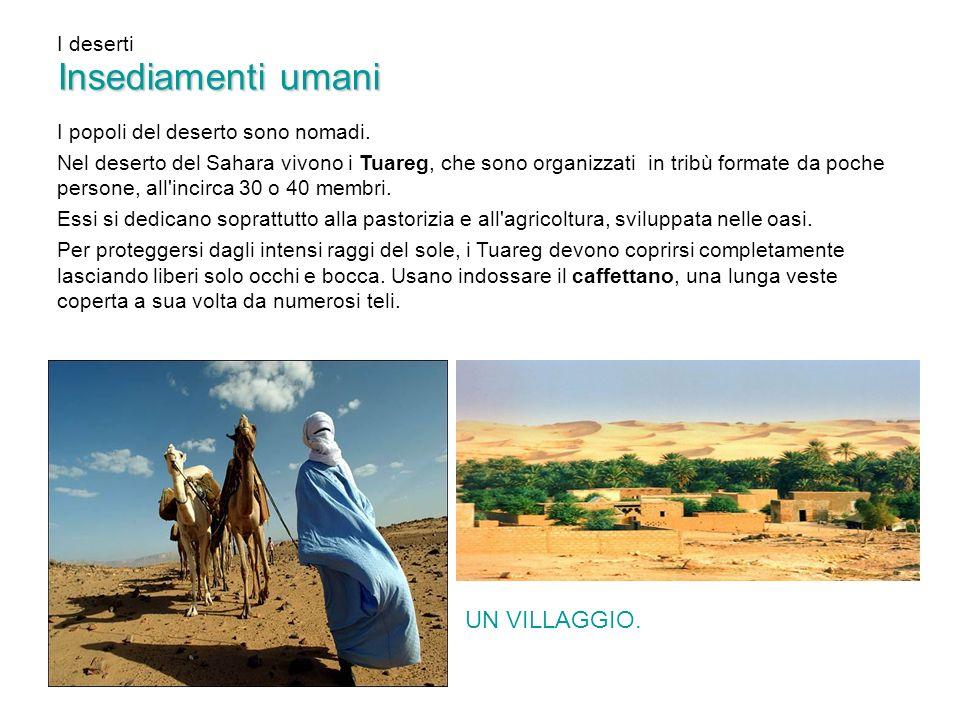 I deserti Insediamenti umani I popoli del deserto sono nomadi. Nel deserto del Sahara vivono i Tuareg, che sono organizzati in tribù formate da poche