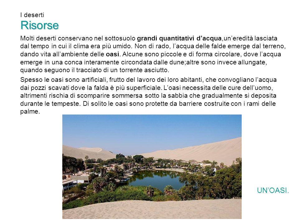 Molti deserti conservano nel sottosuolo grandi quantitativi dacqua,uneredità lasciata dal tempo in cui il clima era più umido. Non di rado, lacqua del