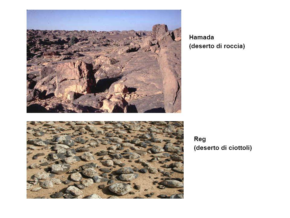DESERTO ATACAMA ( sabbia (erg) e pietra (hamada)
