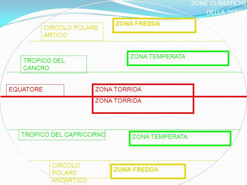 ZONE CLIMATICHE DELLA TERRA CIRCOLO POLARE ARTICO ZONA FREDDA TROPICO DEL CANCRO ZONA TEMPERATA EQUATORE ZONA TORRIDA TROPICO DEL CAPRICORNO ZONA TEMPERATA ZONA FREDDA CIRCOLO POLARE ANTARTICO