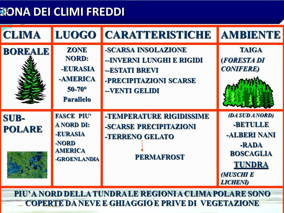 ZONA DEI CLIMI TEMPERATI CLIMALUOGOCARATTERISTICHEAMBIENTIMEDITERRANEO TIPICO DELLE COSTE DEL MAR MEDITERRANEO -ZONE COSTIERE -ZONE COSTIERE DEI CONTI
