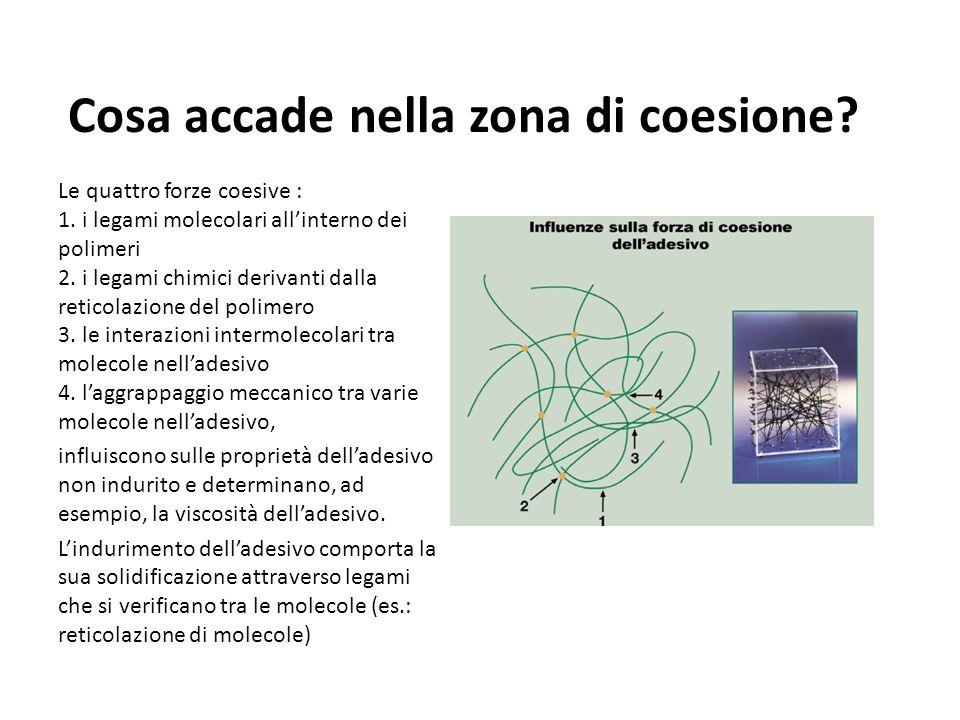Cosa accade nella zona di coesione.Le quattro forze coesive : 1.