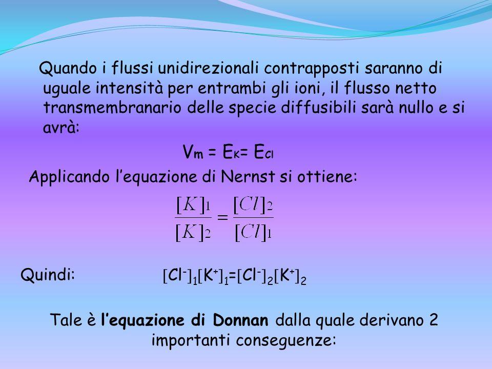 Quando i flussi unidirezionali contrapposti saranno di uguale intensità per entrambi gli ioni, il flusso netto transmembranario delle specie diffusibi