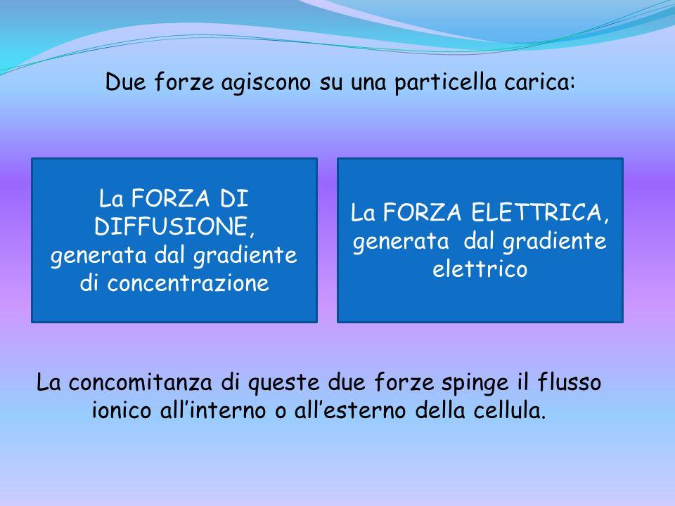 Due forze agiscono su una particella carica: La FORZA DI DIFFUSIONE, generata dal gradiente di concentrazione La FORZA ELETTRICA, generata dal gradien